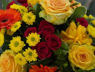 flores sortidas
