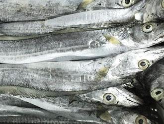 Peixe espada branco (congelado)